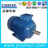 Induction Three Phase Pump Motor