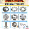 ANSI B16.5 304/316 Stainless Steel Forged Flange RF/FF