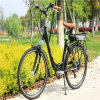 City E Bike with Green Power