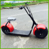 800W/1000W Most Fashionable Green Electric Scooter City Coco