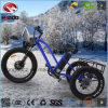 Alloy Frame 3 Wheel Beach Bike Fat Tire Electric Tricycle