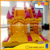 Funny Inflatable Water and Dry Slide (aq1109)