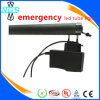 Outdoor Emergency LED Lighting, Rechargeable LED Tube Light