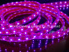 CE EMC LVD RoHS Two Years Warranty, LED Flexible SMD3528/5050 Pink Strip Light with CE& RoHS