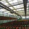 Low Cost China Multifunction High Quality Glass Greenhouse for Flower