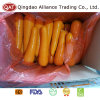 Fresh Whole Carrot with Export Quality