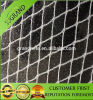 High Quality Anti Bird Net Garden Netting Plastic Netting