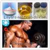 Healthy Effective Raw Steoids L-Triiodothyronine T3 for Weight Loss 55-06-1