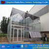 Factory Price Architectural Greenhouse Tempered Laminated Glass Panel for Agriculture Price for Angriculture&Aquaponics&Cucumber