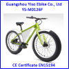 26 Mountain Electric Fat Cruiser Bicycle with Triangle Battery Case