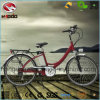 Wholesale 250W Electric City Bike Cheap Road Fahrrad with Pedal