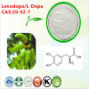 CAS: 59-92-7 Levodopa L-Dopa for The Treatment of Parkinson′s Disease