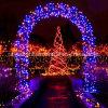 100 LEDs Christams String Light for Home Arch Decor