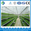 Polycarbonate Greenhouse System