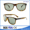 Fashion Style Bifocal Sunglasses Various Style with Unique Demi Frame