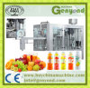 Automatic Fruit Juice Manufacturing Equipment