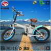 250W Fat Tire En15194 Electric Folding Bike with Lithium Battery