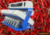 Dry Chili CCD Color Sorting Machine Large Capacity