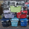 Foldable Shopping Basket - Dxs-031