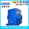 3.3kv 6kv Squirrel Cage Motor Squirrel Cage Motor