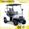 48V Ce Approved 2 Seater Electric Sightseeing Car From China