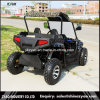 2017 New 1500W Electric Go Kart Buggy