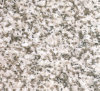 Chinese Pearl White Granite Slab for Flooring Kitchen Countertop (YQG-GS1010)