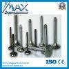 Sinotruk HOWO Parts Exhuast Valve Vg1560050041