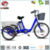250W 3 Wheel Electric Scooter Big Wheel Tricycle Gift