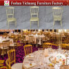 Yc-A184 New Design Steel Banquet Chair for Wedding