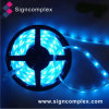 Ce RoHS Waterproof LED Strip Light with Warranty 3 Years