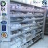 Hot Sale Pharmacy Store Display Shelves (QH-BZ-01)