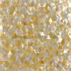 Yellowlip Shell Mosaic Tile, Golden Mother of Pearl Mosaics