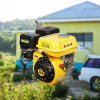 (5.5HP 6.5HP 7HP 9HP 13HP 15HP) Small Air-Cooled Horizontal Shaft Ohv Gasoline/Petrol Engine