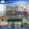 Gas Beverage Bottling Filling Machine Line