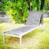 Modern Outdoor Sunny Chaise Lounge