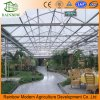 Ecological Environmental Restaurant Greenhouses for Sale