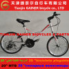 "Tianjin Gainer 20"" Folding Bicycle 21sp Fashionable Design"