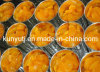 Canned Mandarin Orange with High Quality