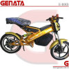 Foldable Electric Bike From China Supplier (GM890E2)