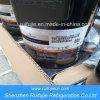 Copeland S⪞ Roll Compressor Zr81K⪞ E-Tfd-5&⪞ Apdot; &⪞ Apdot;