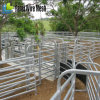 Square Pipe Welded Cattle Corral Panel (China direct supplier)