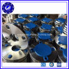 DIN Plate A182 F304 F304L SS304 Stainless Steel Flange