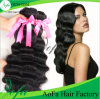 Factory Wholesale Top Quality Unprocessed 100% Virgin Hair Human Hair