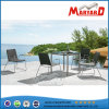 Stainless Steel Outdoor Patio Furniture / Garden Furniture