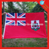 Custom Printing Checked Flags on Sale