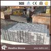 Natural Granite G603 Cobble Stone/ Cube Stone/ Paver Stone/Paving Stone