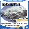 Injectable Steroid Powder Testosterone Enanthate 250mg /600mg for Fast Musle-Building
