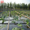 HDPE Geomembrane for Lotus Root Pool Seepage Control