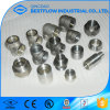 Forged Carbon Steel Pipe Fitting